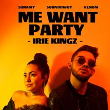 irie-kingz-me-want-party