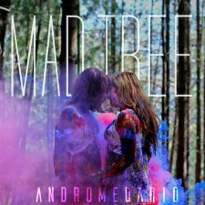 mad-tree-andromedario