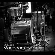 orquesta-macadamia-bogota-rumbero