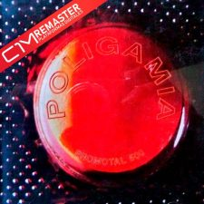 poligamia-promotal-500